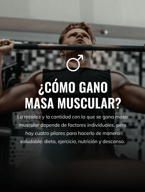 ES_LP_fullwidth-banner_mobile_480x632_build-muscle-male.png