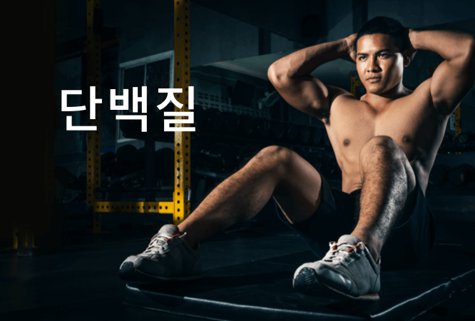KOR_plp-banner_mobile_666x450_protein.png