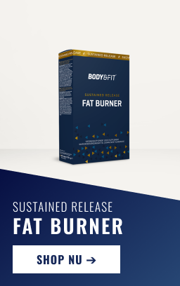 NL_long-flyout_256x408_sustained-release-fatburnerBF-protein.png