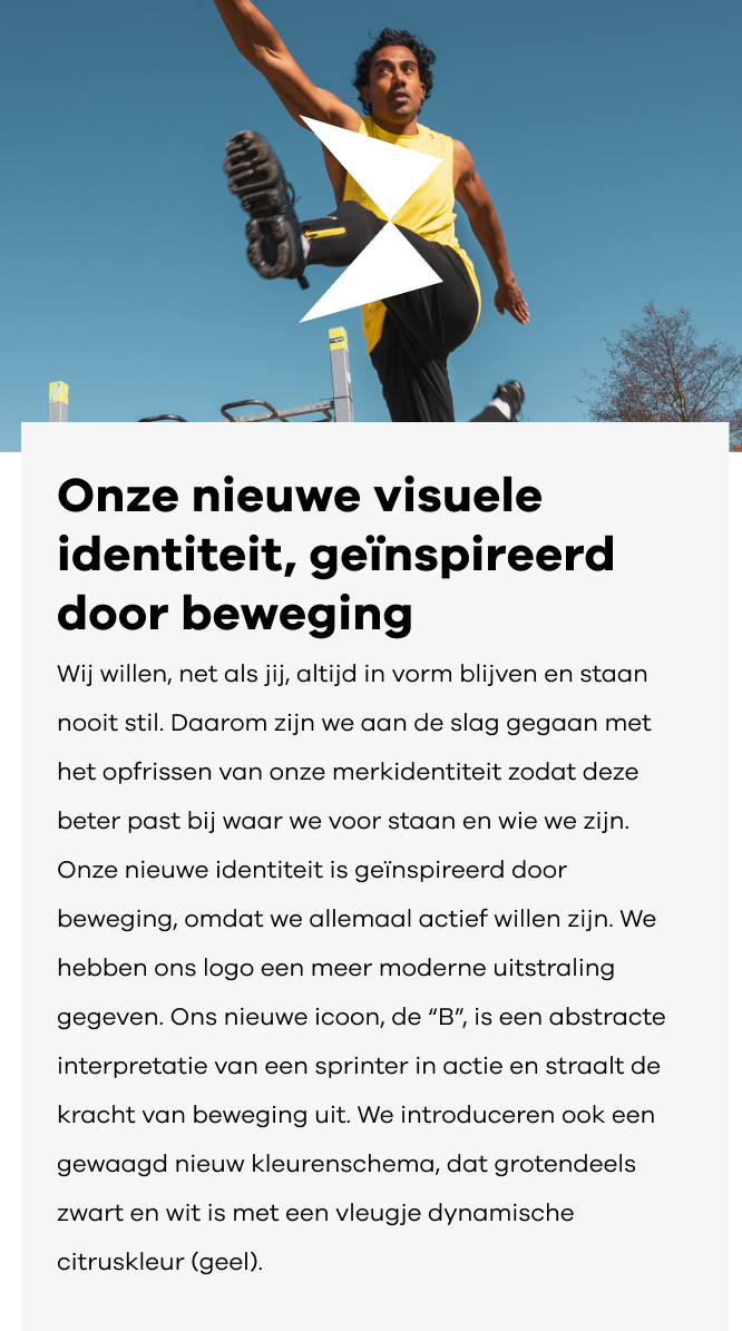 NL-mobile-header-666x1067-visual-identity.png