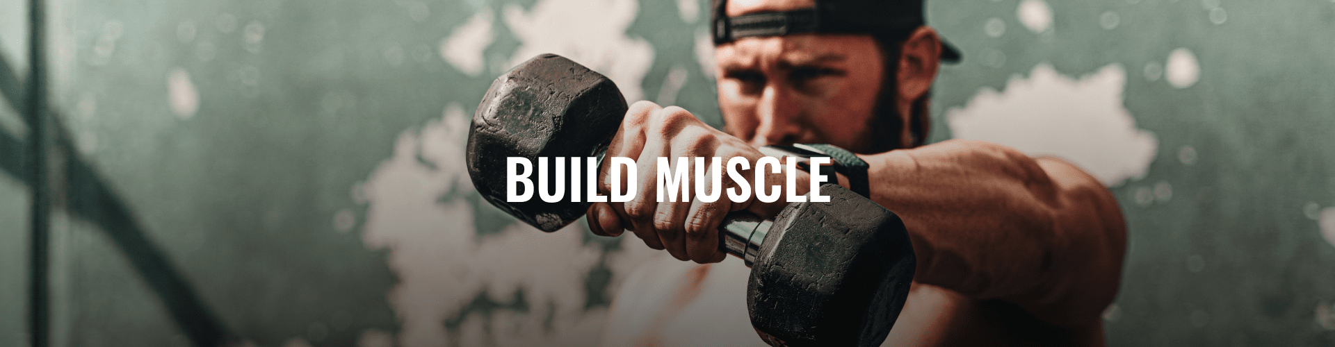 UK_LP-banner_desktop-full_1920x500_BUILD-MUSCLE.png
